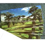 景区3D门票定制 光栅直印门票 3D门票制作商 立体门票卡片生产商
